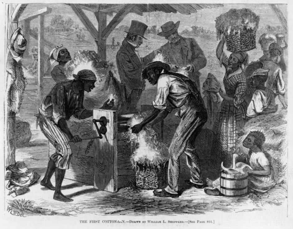 First Cotton Gin, Harpers Weekly 1869